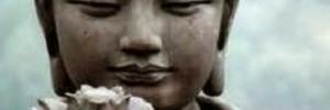 Weekendcursus mildheid & compassie
